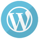 Optiweb Specializes in WordPress Websites